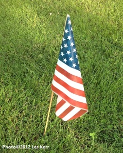U.S. flag - Copy