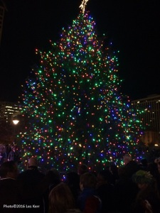 Metro Nashville's 34-foot tall 2016 Christmas tree.